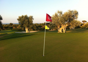 Coccaro Golf Club
