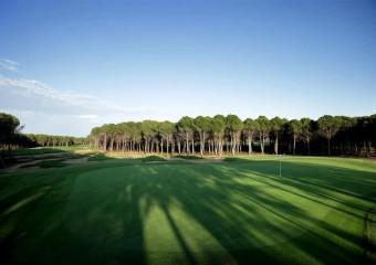 The Montgomerie Golf Club