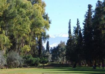 Royal Golf