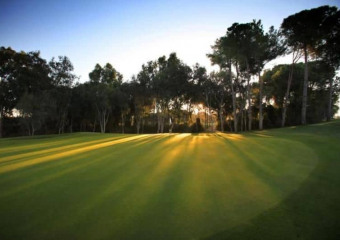 Sueno Golf Club Pines