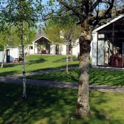 Castlerosse Hotel & Holiday Homes ***