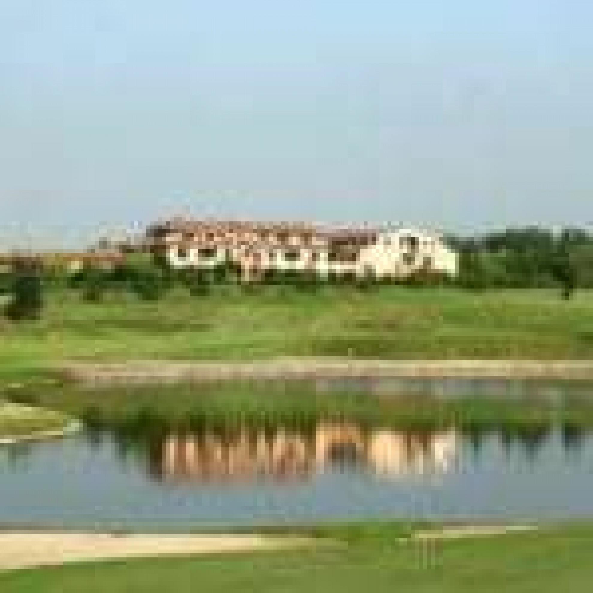 Le Robinie Golf Club  U0026 Resort - Lombardei Italien